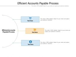 Efficient Accounts Payable Process Ppt Powerpoint Presentation Pictures Deck Cpb