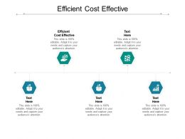 Efficient Cost Effective Ppt Powerpoint Presentation Show Layout Ideas Cpb