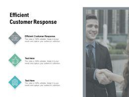 Efficient Customer Response Ppt Powerpoint Presentation Layouts Topics Cpb