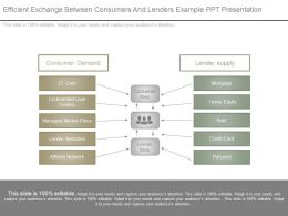Efficient Exchange Between Consumers And Lenders Example Ppt Presentation
