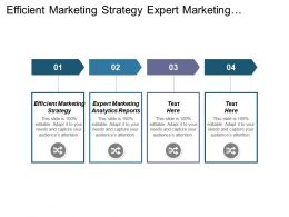 Efficient Marketing Strategy Expert Marketing Analytics Reports Marketing Strategies Cpb