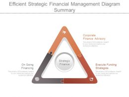Efficient Strategic Financial Management Diagram Summary