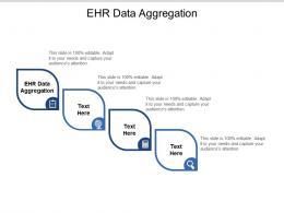 EHR Data Aggregation Ppt Powerpoint Presentation Ideas Microsoft Cpb