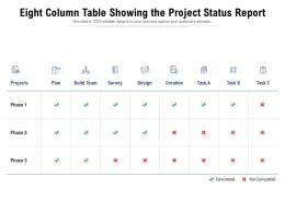 Eight Column Table Showing The Project Status Report