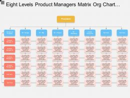 Eight Levels Product Managers Matrix Org Chart Template