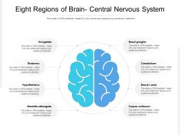 Eight Regions Of Brain Central Nervous System