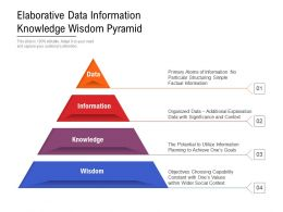 Elaborative Data Information Knowledge Wisdom Pyramid