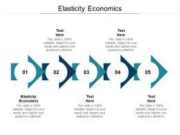 Elasticity Economics Ppt Powerpoint Presentation Icon Pictures Cpb