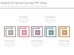 Elasticity Of Demand Example Ppt Slides