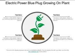 Electric Power Blue Plug Growing On Plant