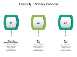 Electricity Efficiency Business Ppt Powerpoint Presentation File Show Cpb