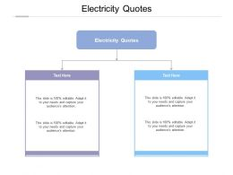 Electricity Quotes Ppt Powerpoint Presentation Gallery Example Cpb