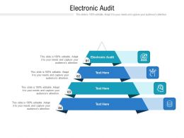 Electronic Audit Ppt Powerpoint Presentation Layouts Deck Cpb