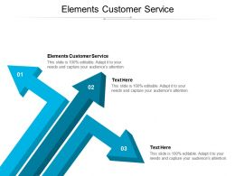 Elements Customer Service Ppt Powerpoint Presentation Infographics Tips Cpb