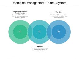 Elements Management Control System Ppt Powerpoint Presentation Pictures Cpb