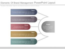 Elements Of Brand Management Powerpoint Layout