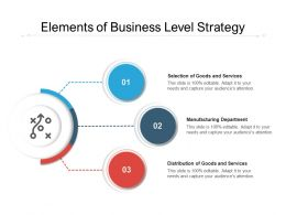 Elements Of Business Level Strategy