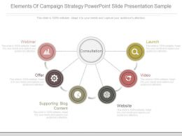 Elements Of Campaign Strategy Powerpoint Slide Presentation Sample