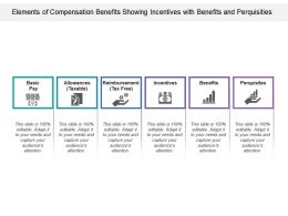 Elements Of Compensation Benefits Showing Incentives With Benefits And Perquisities