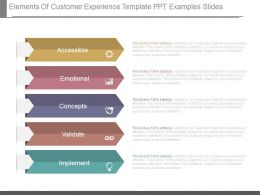 Elements Of Customer Experience Template Ppt Examples Slides