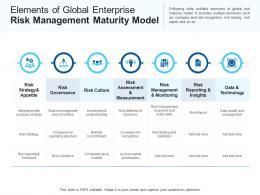 Elements Of Global Enterprise Risk Management Maturity Model