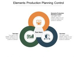 Elements Production Planning Control Ppt Powerpoint Presentation Professional Icons Cpb