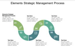 Elements Strategic Management Process Ppt Powerpoint Presentation Infographics Cpb
