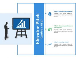 Elevator Pitch Ppt Summary Themes