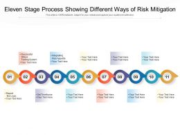 Eleven Stage Process Showing Different Ways Of Risk Mitigation