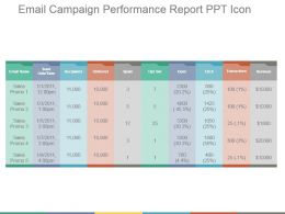 Email Campaign Performance Report Ppt Icon
