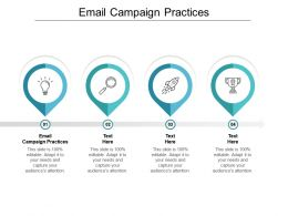 Email Campaign Practices Ppt Powerpoint Presentation Layouts Template Cpb