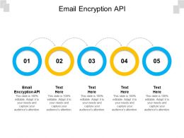 Email Encryption API Ppt Powerpoint Presentation Styles Slides Cpb