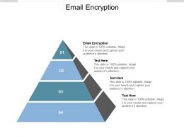 Email Encryption Ppt Powerpoint Presentation Pictures Background Designs Cpb