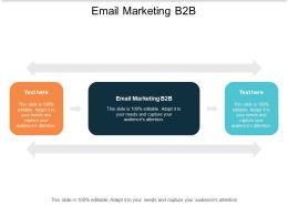 Email Marketing B2B Ppt Powerpoint Presentation Infographic Template Icon Cpb