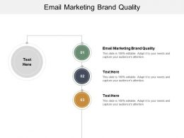 Email Marketing Brand Quality Ppt Powerpoint Presentation Layouts Icon Cpb