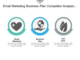 Email Marketing Business Plan Competitor Analysis Business Management Cpb