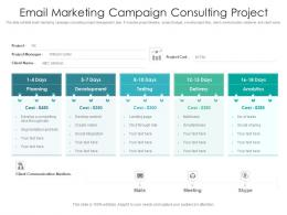 Email Marketing Campaign Consulting Project