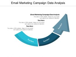 Email Marketing Campaign Data Analysis Ppt Powerpoint Presentation Icon Slide Download Cpb
