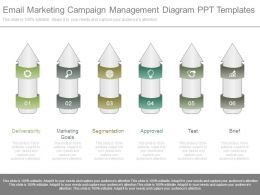 Email Marketing Campaign Management Diagram Ppt Templates