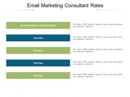Email Marketing Consultant Rates Ppt Powerpoint Presentation Infographics Slides Cpb