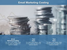 Email Marketing Costing Ppt Powerpoint Presentation Gallery Portrait Cpb