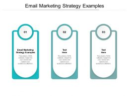 Email Marketing Strategy Examples Ppt Powerpoint Presentation Ideas Portfolio Cpb