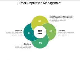 Email Reputation Management Ppt Powerpoint Presentation Summary Example Topics Cpb