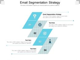 Email Segmentation Strategy Ppt Powerpoint Presentation Portfolio Graphics Pictures Cpb