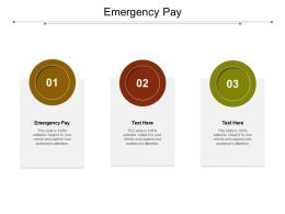 Emergency Pay Ppt Powerpoint Presentation Styles Structure Cpb