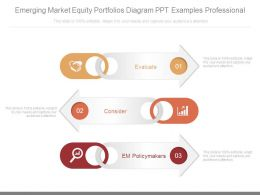 Emerging Market Equity Portfolios Diagram Ppt Examples Professional