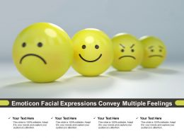 Emoticon Facial Expressions Convey Multiple Feelings