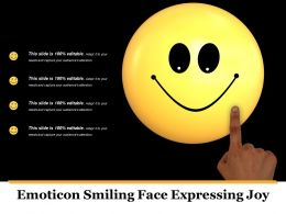 Emoticon Smiling Face Expressing Joy