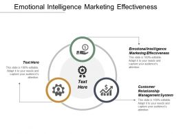 Emotional Intelligence Marketing Effectiveness Customer Relationship Management System Cpb
