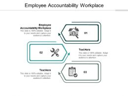Employee Accountability Workplace Ppt Powerpoint Presentation Slides Show Cpb